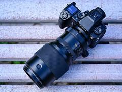 享受中册页的极致亮泽 富士GFX50S百搭GF250mm F4R伴音拍摄体验