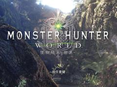 肝游戏:想说爱你不容易 《怪物猎人:世界》PC版游玩指南