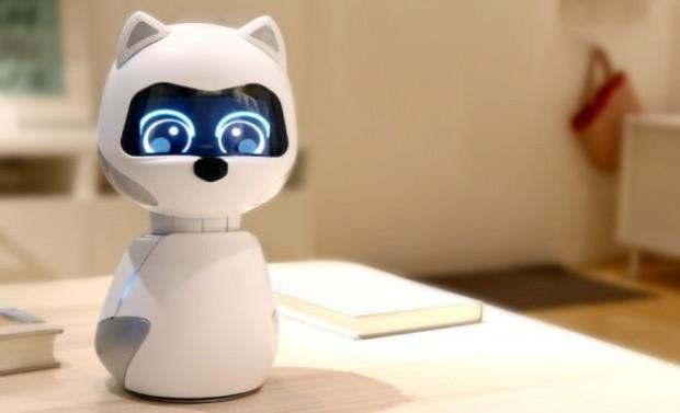 《机器人总动员》的Eva?不,是宠物机器人Kiki