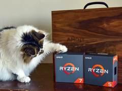 这东西还用延寿?AMD限制三代锐龙处理器超频能力以延长寿命