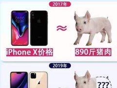 买不起猪肉、买得起极速6合—极速6合五分钟!iPhone 11预订销量成绩斐然