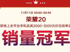 喜讯连连 双十一荣耀20单品销量三连冠,MagicBook销售量破万