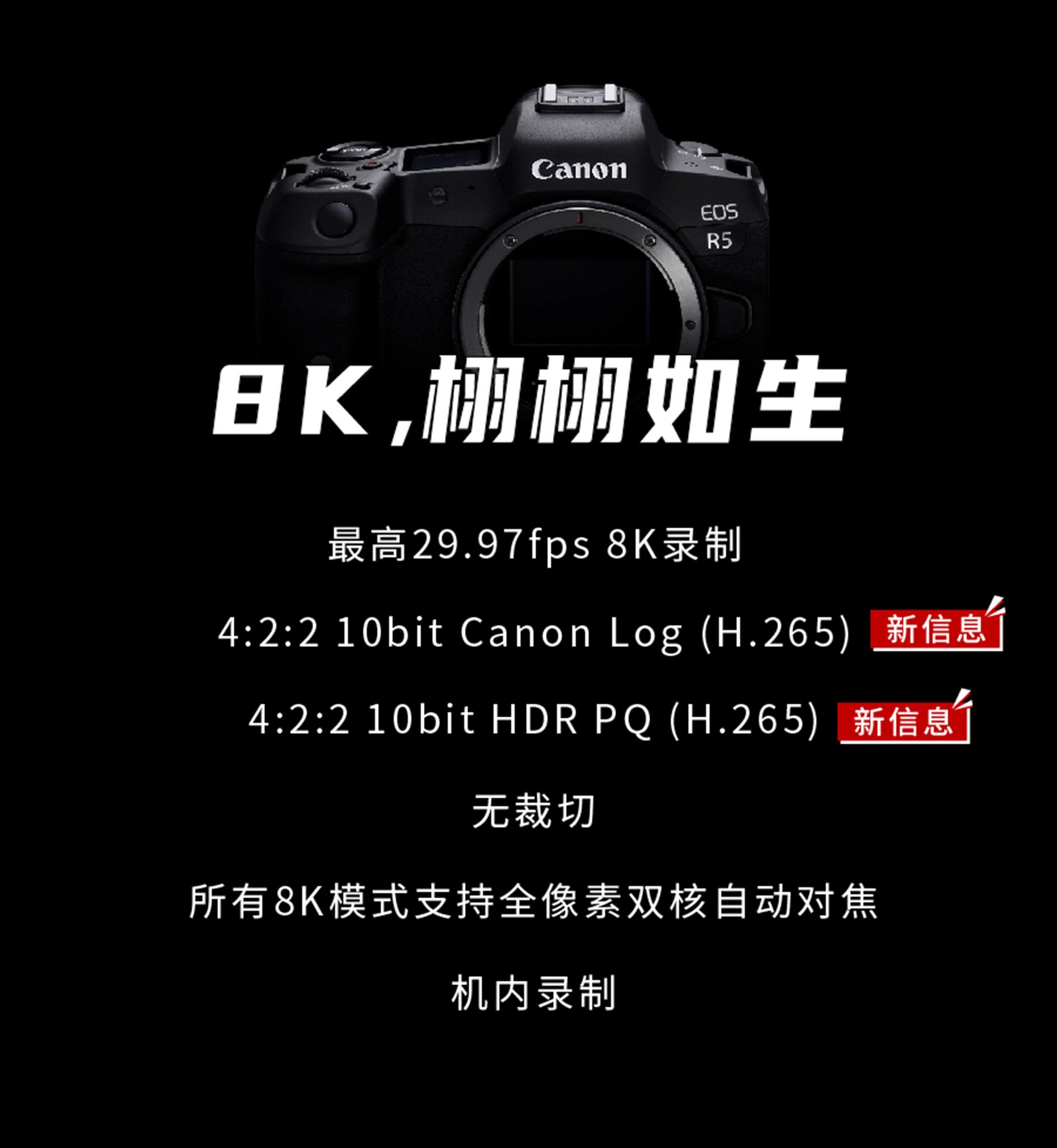 支持8K 4:2:2 10bit内录 佳能EOS R5视频酞霸道