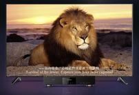 在家就能享受高端影院功能,杰科G5800带来4K画质+杜比视界